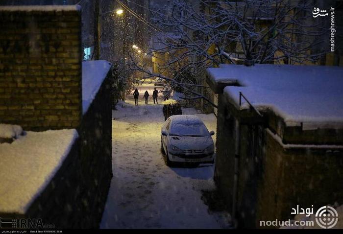 عکس /  بارش سنگین برف در سنندج