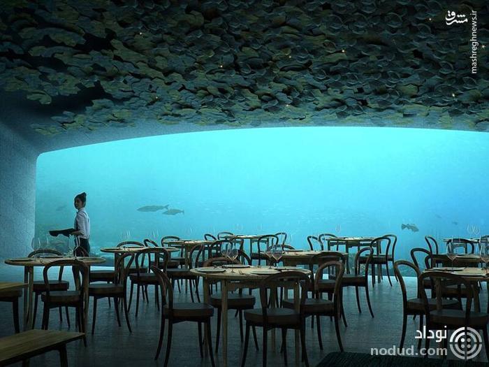 رستوران های عجیب و غریب دنیا +تصاویر