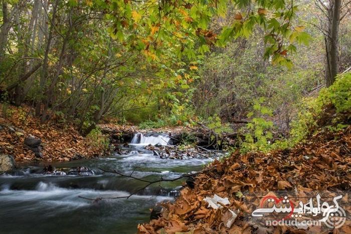 زشک مشهد، روستای چشمه های جوشان