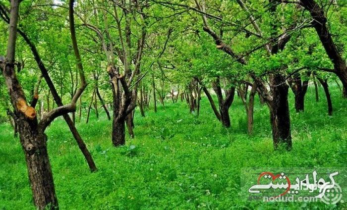 منطقه ییلاقی عنبران مشهد، امکانات خوب تفریحی و رفاهی