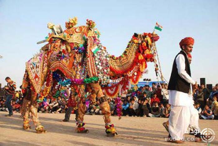 نمایشگاه شتر پوشکار هند
