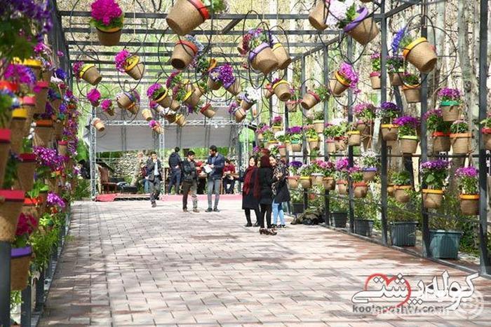 دالان گل در جشنواره لاله ها