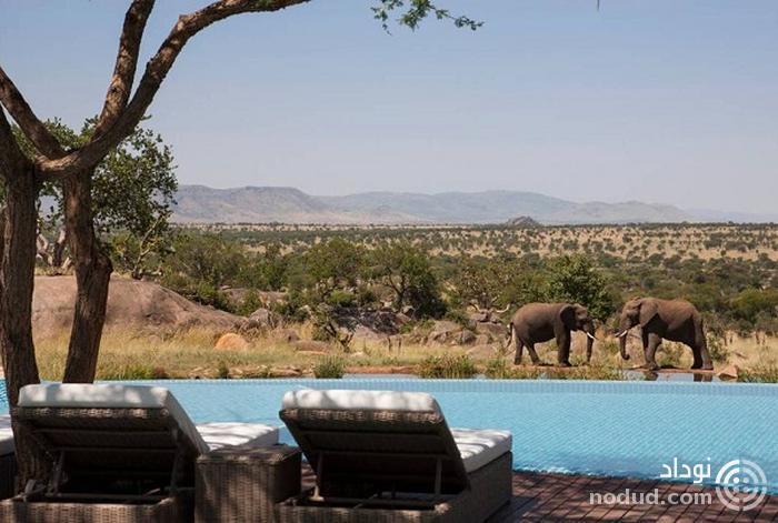 سافاری چهار فصل سرنگتی (Four Seasons Safari Lodge Serengeti)، تانزانیا