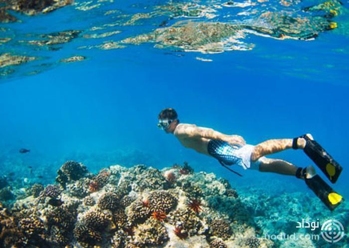 جزیره بزرگ هاوایی