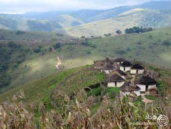 جنگل های بارانی کنگو، آفریقا