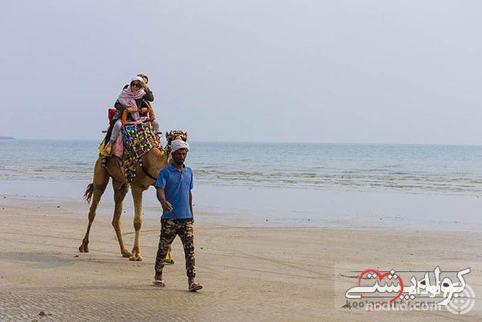سوارکاری؛ اسب یا شتر؟