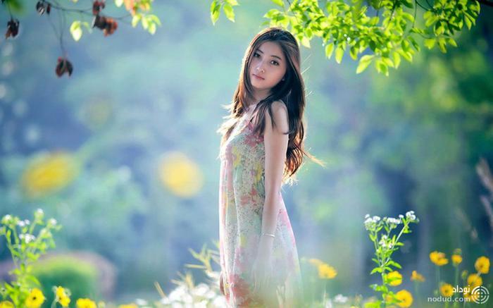 لیو شاچنگ
