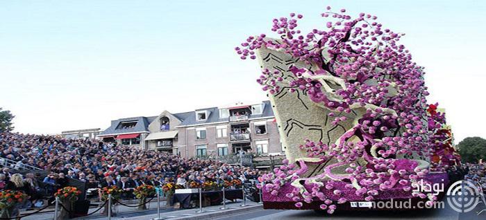 جشنواره گل های غول پیکر در هلند